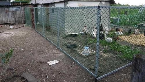Готовый забор из сетки рабицы