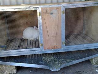 Клетка для кроликов, дверцы которой изготовлены из сетки