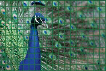 Пример использования сварной сетки для обустройства клеток в зоопарке